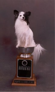 Gidget_in_Big_Trophy